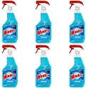 6-Count Windex 23 Ounce Original Glass Cleaner