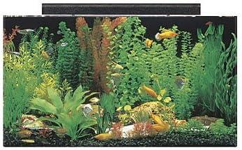 SeaClear Aquarium Combo Set