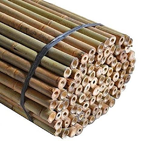 Elixir Gardens 3ft Extra Strong Heavy Duty Bamboo Plant Support Garden Canes 10-12mm diameter x 10