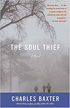 Book The Soul Thief (Vintage Contemporaries)