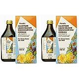 (2 Pack) - Floradix - Saludynam Liquid   250ml   2 PACK BUNDLE