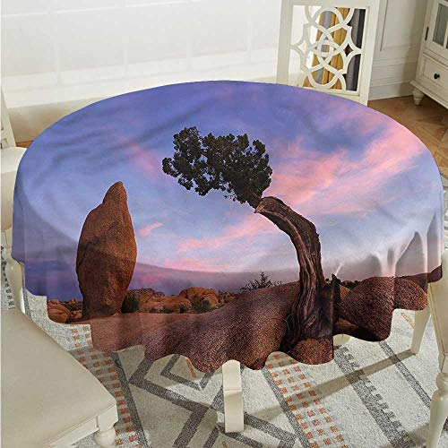 Tim1Beve Americana Spill-Proof Table Cover Bonsai Rocks in Twilight Resistant/Spill-Proof/Waterproof Table Cover D54 INCH