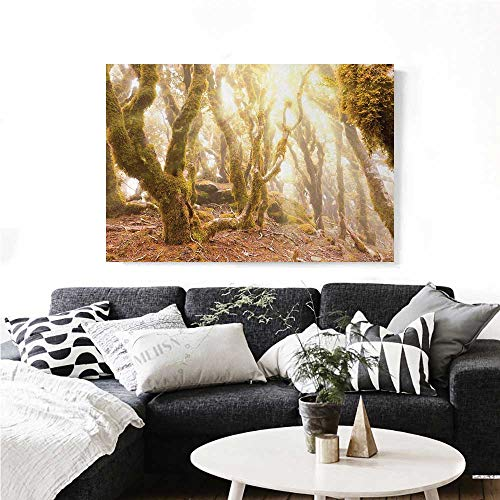 homehot Rainforest Wall Art Canvas Prints Morning Sun Rays Mist in Virgin Mountain Forest Moss on Trees Natural Paradise Ready to Hang for Home Decorations Wall Decor 36