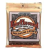 Ernie Ball 2146 Earthwood Medium Light Acoustic