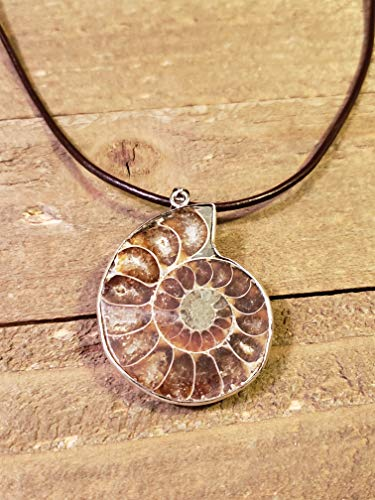 (Fossil Ammonite Pendant Leather Necklace Stone Jewelry Boho (N680))