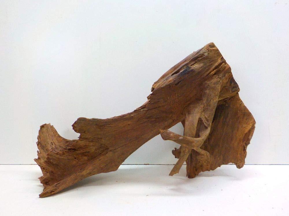 AQUARISTIKWELT24 No. 7934 XXL Mangrove Root Dimensions 80 x 36 x 49 cm