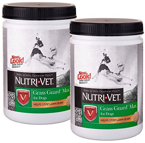 Nutri-Vet Grass Guard MAX Chewables with Probiotics for Dogs, 365ct, Safety-Sealed Twin-Pack