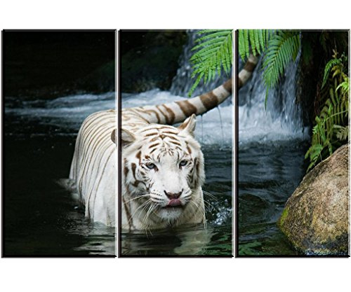 (White Tiger Picture Decor for Bedroom, PIY Gorgeous Wall Art of Ivory Tigress in Pond, Wild Life Theme Canvas Painting Prints on Canvas (3 Piece, 1