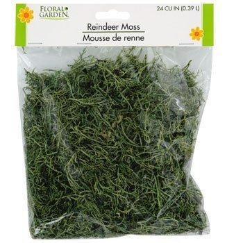Floral Garden Reindeer Moss 24 CU IN (0.39 L)