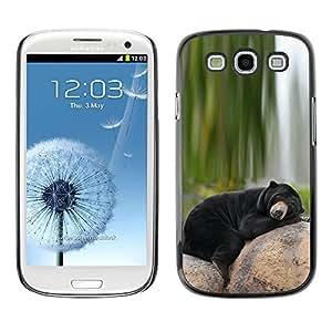 TECHCASE**Cubierta de la caja de protección la piel dura para el ** Samsung Galaxy S3 I9300 ** Bear Sleepy Alaska Black Nature Green
