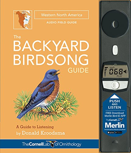 backyard birds of north america - 7