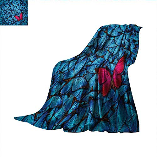 Butterflies Throw Blanket Colorful Butterflies Tropical Bugs Lepidoptera Collection Free Unlikeness Oversized Travel Throw Cover Blanket 60