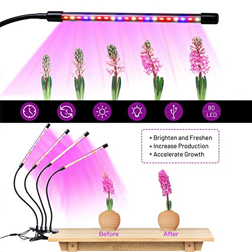 Led Grow Light for Indoor Plants,80 LED Red Blue Full Spectrum Plant lamp,4 Heads Adjustable Gooseneck Lamp with 3/9/12H Timer, 10 Dimmable Level and 3 Switch Modes,for Seedling Flower Veg Greenhouse