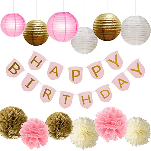 Paxcoo Pink and Gold Party Supplies with Happy Birthday Banner for Birthday (Decorations For Birthday Party For Adults)