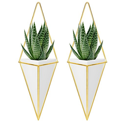 (Nellam Ceramic Planter Set - 2 Pcs Modern Geometric Hanging Wall Pots - Brass Framed, Mounted Decorative Vases & Container for Indoor Plants & Succulents - for Flowers, Herbs,)
