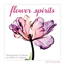 2019 Flower Spirits — Radiographs of Nature by Steven N. Meyers Mini Calendar: by Sellers Publishing, 7x7 (CS-0465)