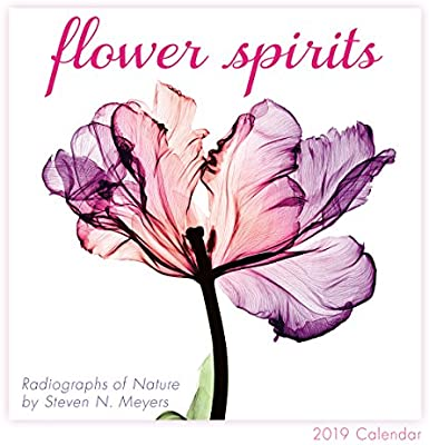 Flower Spirits 2019 Mini Calendar Sellers Publishing 0764453004656