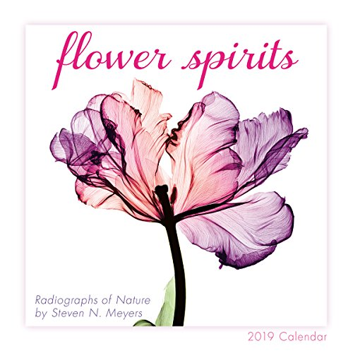 Flower Spirits 2019 Mini Calendar