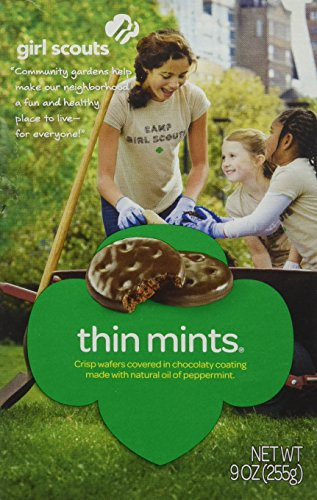 girl-scout-thin-mints-cookies-2-boxes