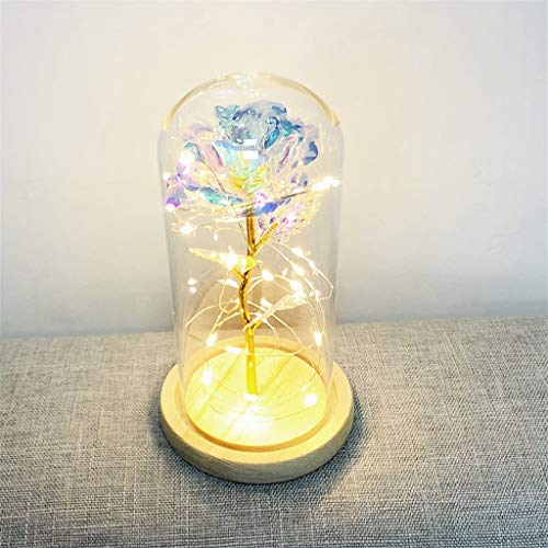 (CapsA Gold Foil Rose Flower Lamp Great Gift for Mother Festival Birthday Glass Cover Led Micro Landscape Romantic Simulation Rose for Home Decoration)