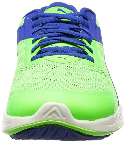 V2 Silver Homme Web Multicolore surf The Course Puma Ignite puma green De Gecko Chaussures 5Ofnw4xqTH