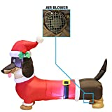 5ft Long Wiener Dog Self-Inflatable with Suit