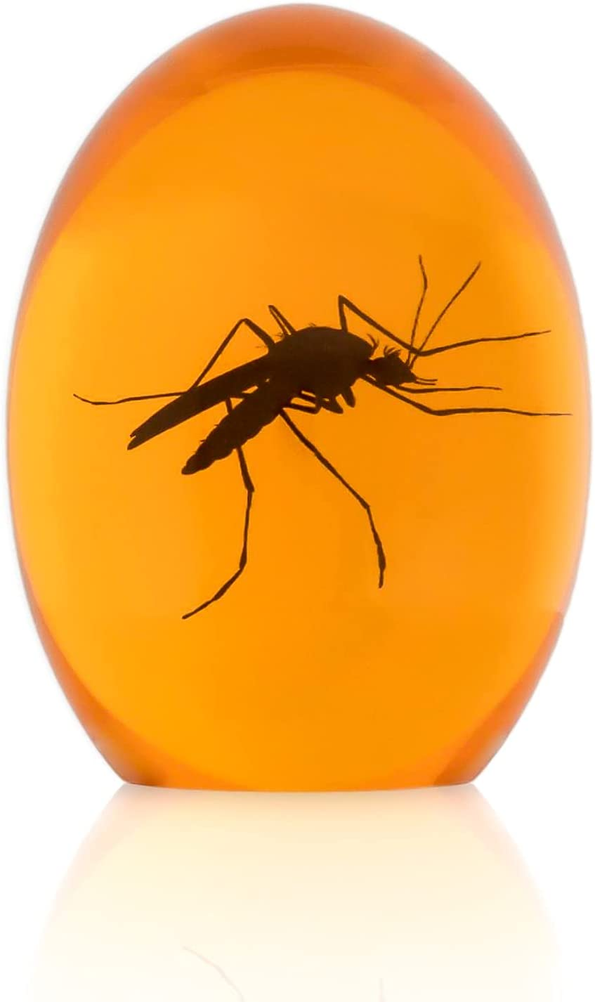 Amber Mosquito Paper Weight Collectible with Dino DNA