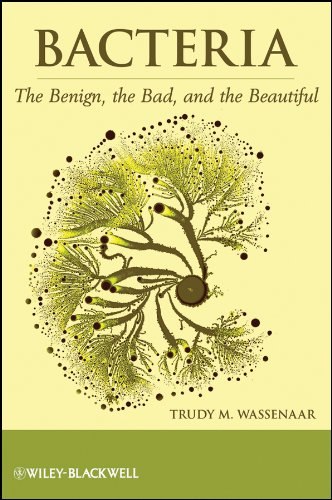 Image of Bacteria: The Benign, the Bad, and the Beautiful