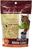 Petlinks Nibble-Licious Cat Grass Seeds 5 oz