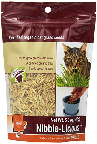 Petlinks Nibble-Licious Cat Grass Seeds 5 - Grass Seed For Cats