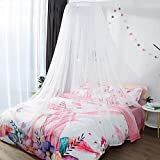 Alitrade Nylon Adults Double Bed (Round-Canopy) Mosquito Net(White)