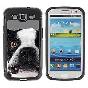 Suave TPU GEL Carcasa Funda Silicona Blando Estuche Caso de protección (para) Samsung Galaxy S3 III I9300 / CECELL Phone case / / Boston Terrier Goofy Dog Canine /