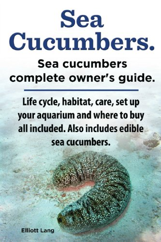 - Sea Cucumbers. Seacucumbers complete owner's guide. Life cycle, habitat, care, set up your aquarium and where to buy all included. Also includes edible sea cucumbers