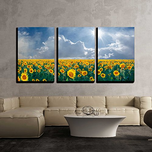 wall26 - 3 Piece Canvas Wall Art - Summer Beautyful Landscape with Big Sunflowers Field and Blue Sky with Clouds - Modern Home Decor Stretched and Framed Ready to Hang - 24''x36''x3 Panels by wall26