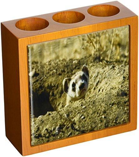 Rikki Knight Black Footed Ferret Design  Inch Tile Wooden...