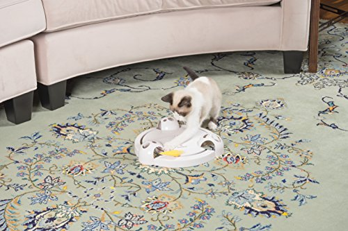 PetSafe Pounce Cat Toy, Interactive Automatic Toy for Cat or Kitten, Adjustable Electronic Battery Operated Toy by PetSafe (Image #1)