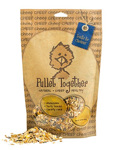 treats-for-chickens-pullet-treat-1-pound