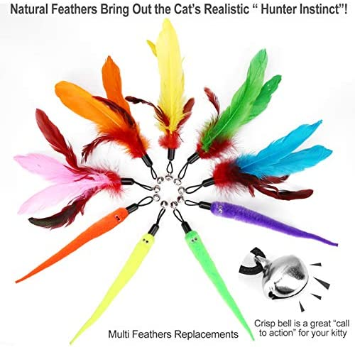 MeoHui 11PCS Retractable Cat Feather Toy Set, Interactive Cat Toys Wand with 2 Poles & 9 Attachments Worm Bird Feathers, Cat Feather Teaser Wand Toy for Kitten Cat Having Fun Exercise Playing 5