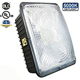 Hytronics 75W LED Canopy Light with UL Listed and DLC Certified,5000K,7500LM,300-350W HPS/HID Canopy Light Replacement,Waterproof and Outdoor Rated,5 Years Warranty