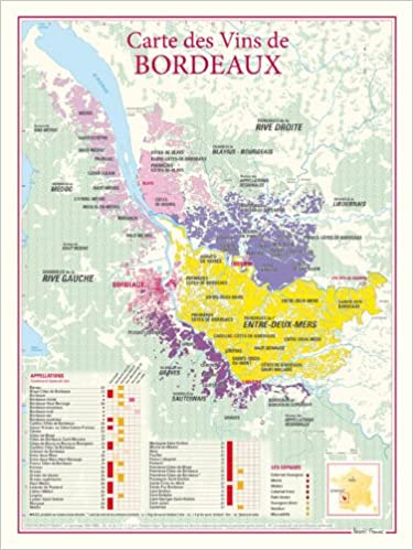 Carte Bordeaux Appellations.Amazon Fr Carte Des Vins De Bordeaux Benoit France Livres