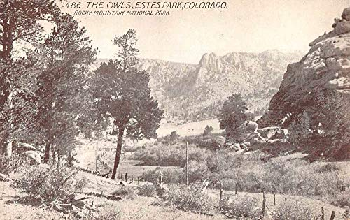 Estes Park Colorado The Owls Rocky Mountain National Park Postcard J78969