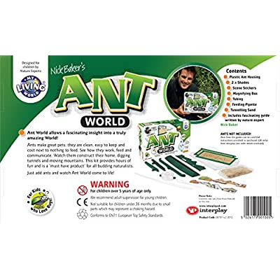 Ant World: Toys & Games