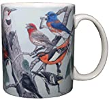 Songbirds of Western North America 11 Oz. Ceramic Coffee Mug Bird Tea Cup