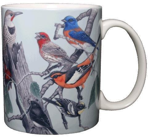 Songbirds of Western North America 11 Oz. Ceramic Coffee Mug Bird Tea Cup