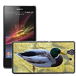 Hot Style Cell Phone PC Hard Case Cover // M00108801 Drake Duck Mallard Male Water Bird // Sony Xperia Z L36H C6603