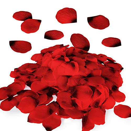 (Royal Imports Red Silk Flower Artificial Rose Petals for Wedding Aisle, Party Favor & Table, Vase, Home Decoration, 1000 PCS)