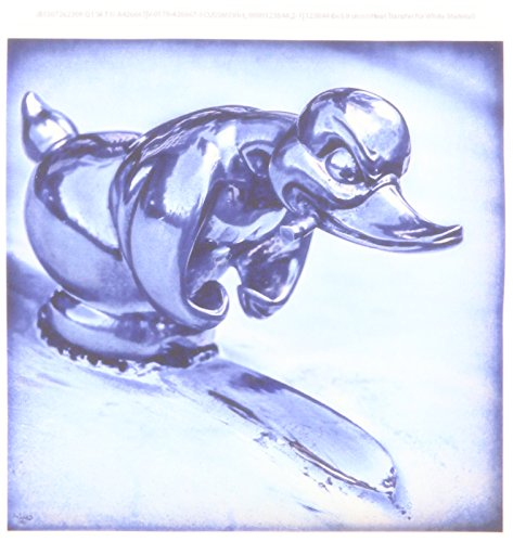 3dRose ht_123844_2 Duck Hood Ornament Vintage Iron on Heat Transfer for White Material, 6 by ()