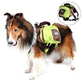 Alfie Pet by Petoga Couture - Frost Dog Foldable Saddle Bag - Color Green, Size: XL