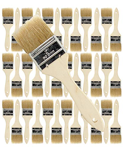 36 Pack of Single X Thick Paint and Chip Paint Brushes for Paint, Stains, Varnishes, Glues, Acrylics and Gesso. (2 -