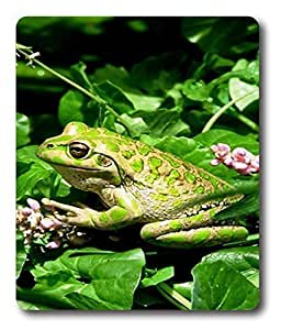 custom printed mouse pads Green Frog Animal PC Custom Mouse Pads / Mouse Mats Case Cover